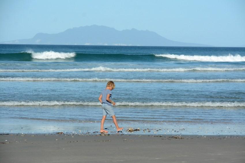 Quin beachcombing