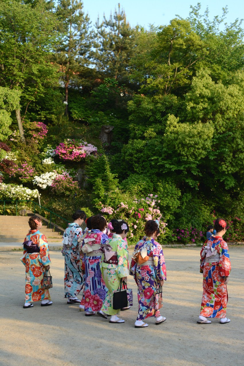 Japanese women in kimonos amongst flowers