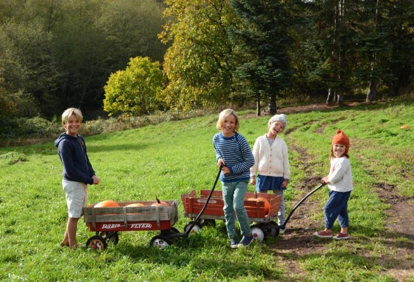 kids-at-pumpkin-farm