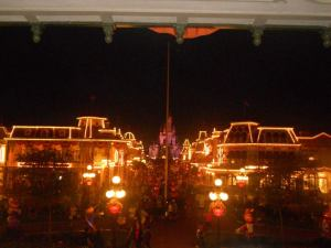 Magic Kingdom at Night