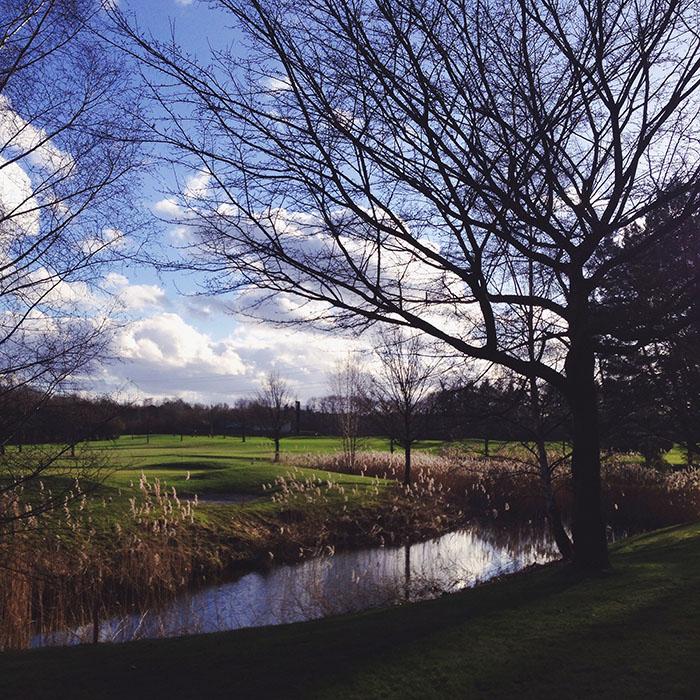 Photo diary 14 golf