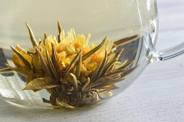 Theebloemen chrysant