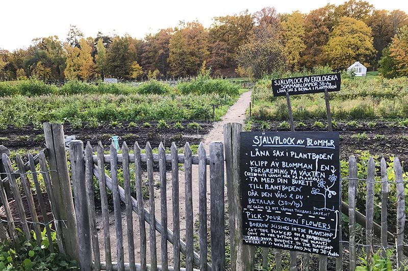 Rosendals Trädgård pluktuin