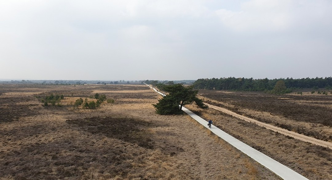Wandelen in Nationaal Park Veluwezoom uitzicht brandtoren