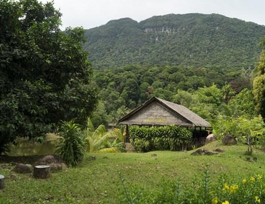 Terug naar de natuur- beleef het magische Borneo - sommarmorgon.com