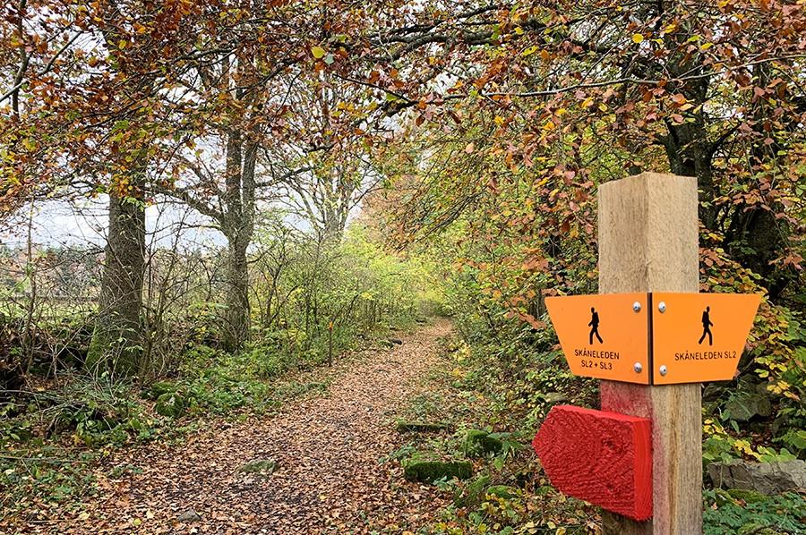 Skåneleden hiking trail Zweden - sommarmorgon.com