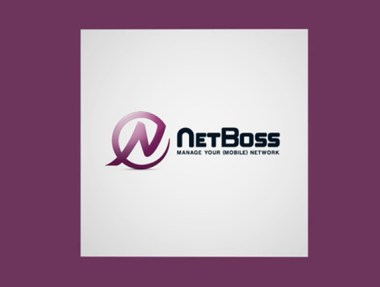 NetBoss Ambulance