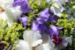 Blumenversand in Hamburg
