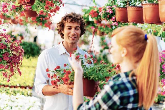Nachhaltige Schnitt-Blumen aus Gärtnereien