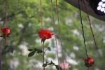 Blumen im Mai auf der Bühne