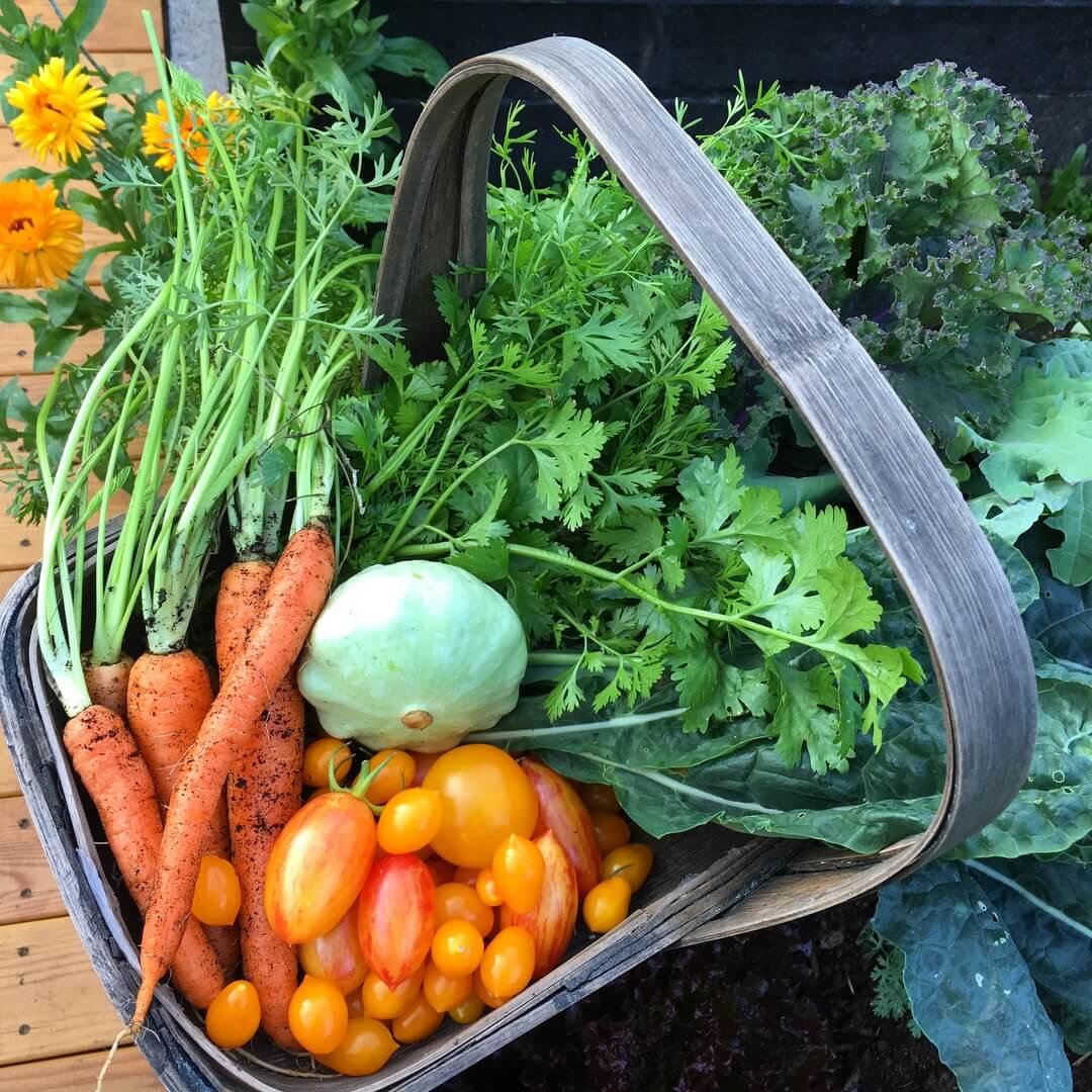 hjemmedyrket grøntsager