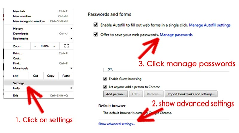 view saved password in chrome