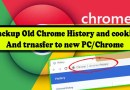 Backup Export and Restore Chrome History and Cookies