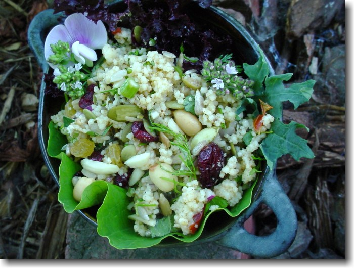 Couscous Salad with Goat Cheese, dried cranberries and Nuts. Photo Credit: George Wesley & Bonita, Flickr