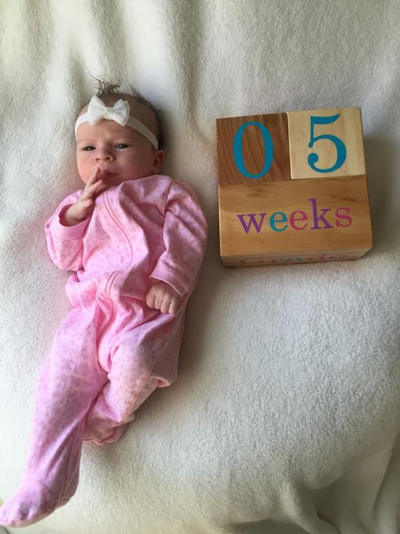 Where Is My Baby Sitting At 15 Weeks : where, sitting, weeks, Weeks, Girl,, That's, Fattitude