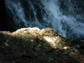 2012.07.06 - Boyanski vodopad 149