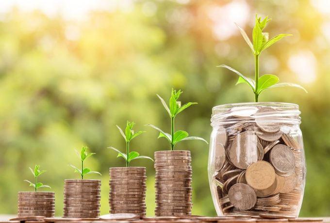 お金と芽の写真