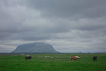En el momento de esta foto nos encontrábamos haciendo autostop para ir a un lugar que nos habían recomendado muchos paisanos. Tuvimos que hacer autoestop porque la carretera se estaba volviendo muy difícil para un coche de ciudad. Al fondo se encuentra una montaña, creíamos que era el volcán Hekla, pero este se encuentra en otro lugar.