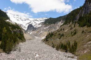 Nisqually River, Mt Rainier