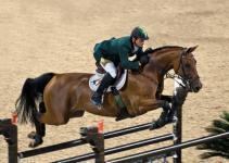 Razas de caballos de salto