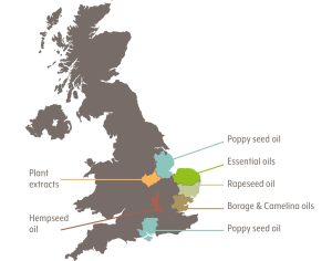 map england oil