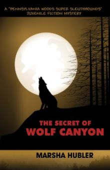 The Secret of Wolf Canyon by Marsha Hubler