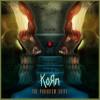 The Paradigm shift - Korn