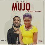 Music: Lizzy Oye - Mujo ft. small Doctor