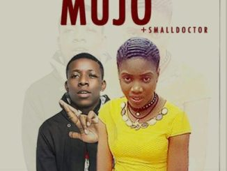 Music: Lizzy Oye - Mujo ft. small Doctor