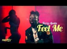 VIDEO: Terry Apala - Feel Me