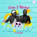 MP3 : Endia ft. Moelogo - Tender