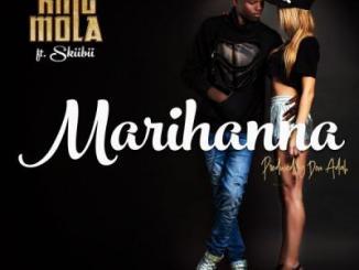 MP3 : King Mola ft Skiibii - Marihanna