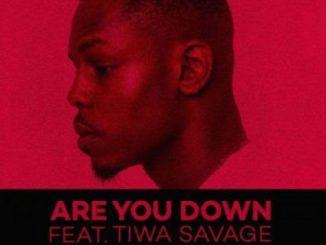 Lyrics: Ladipoe - Are You Down ft. Tiwa Savage