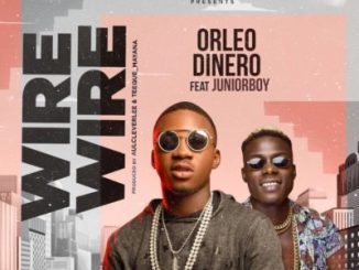 MP3 : Orleo Dinero - Wire Wire ft. Junior Boy