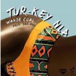 MP3 : Wande Coal - Turkey Nla