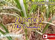 VIDEO: Blossom Comedy - The Dreamer (Episode 2)
