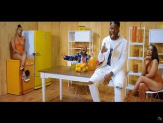 VIDEO: DJ Ecool - ADA ft. Davido
