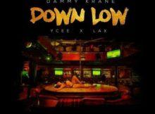 Lyrics: Dammy Krane - Down Low ft. YCee & L.A.X