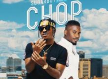 MP3: Sugarboy - Chop Ft. Ycee