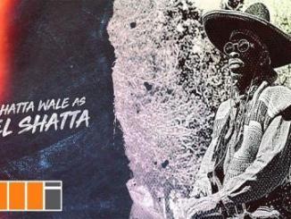 Lyrics: Shatta Wale - Gringo