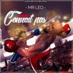MP3: Mr. Leo - On Se Connait Pas