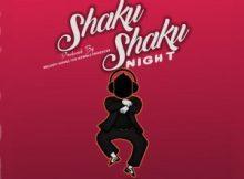 Freebeat: Shaku Shaku Knight (Prod By Melodysongz)