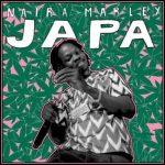(Lyrics) Naira Marley - Japa