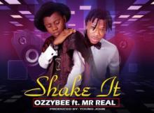 (music) OzzyBee x Mr Real - Shake It [Prod. Young John]
