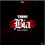 MP3: Terri - Bia (Prod. By Damayo)