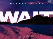 Lyrics: Maleek Berry - Wait
