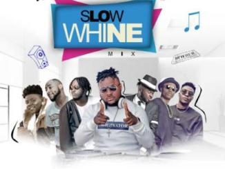 MIXTAPE: DJ Baddo - Slow Whine Mix