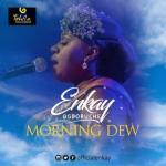 VIDEO: Enkay - Morning Dew (Live)