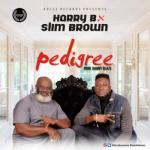 Harry B Ft Slim Brown - Pedigree