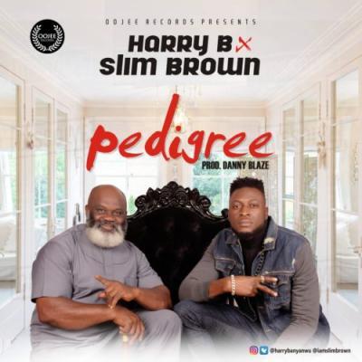 Harry B Ft Slim Brown - Pedigree